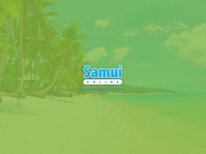 Samui on line | Vai alla scheda progetto